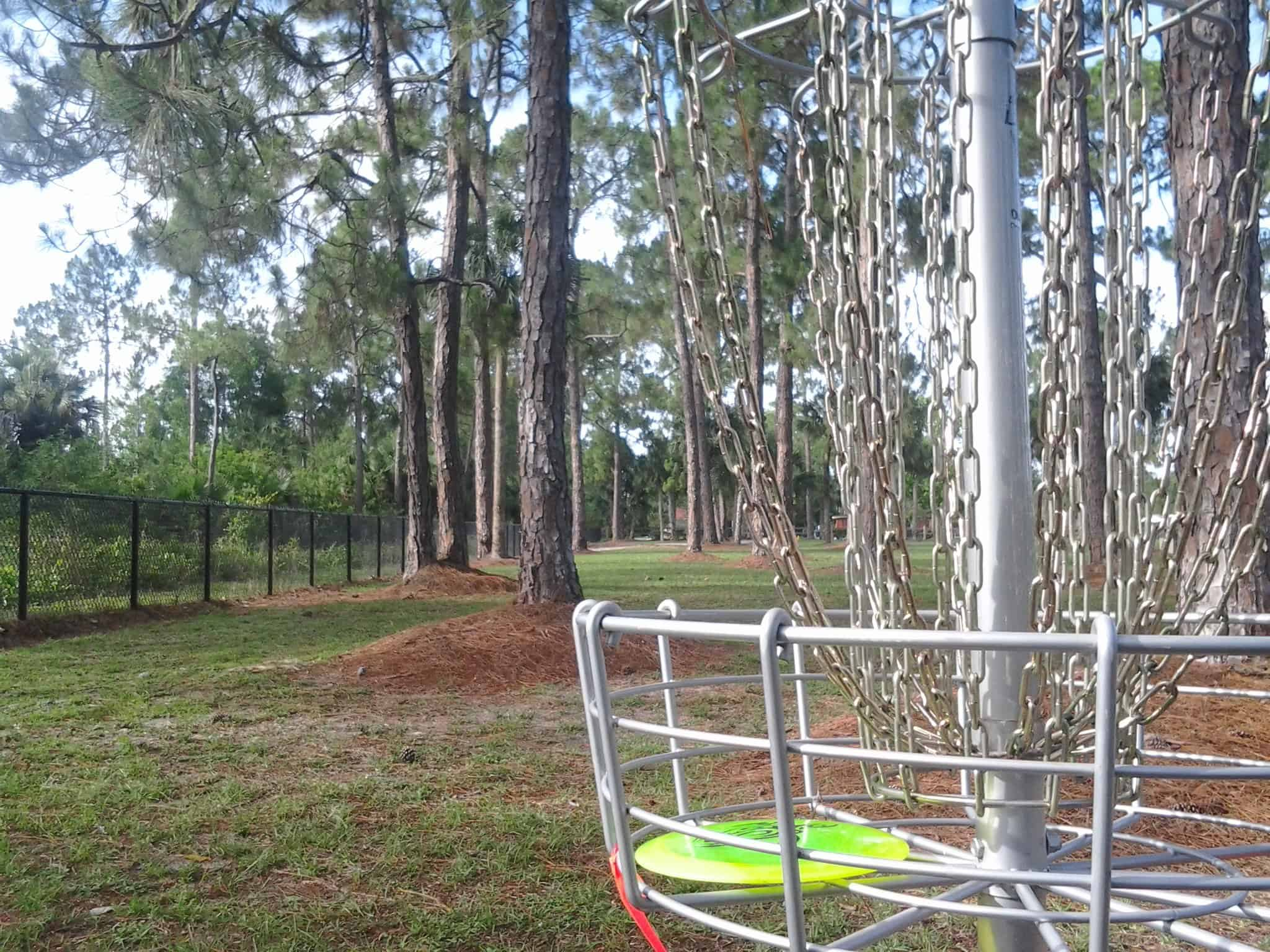 Frisbee golf disc in basket