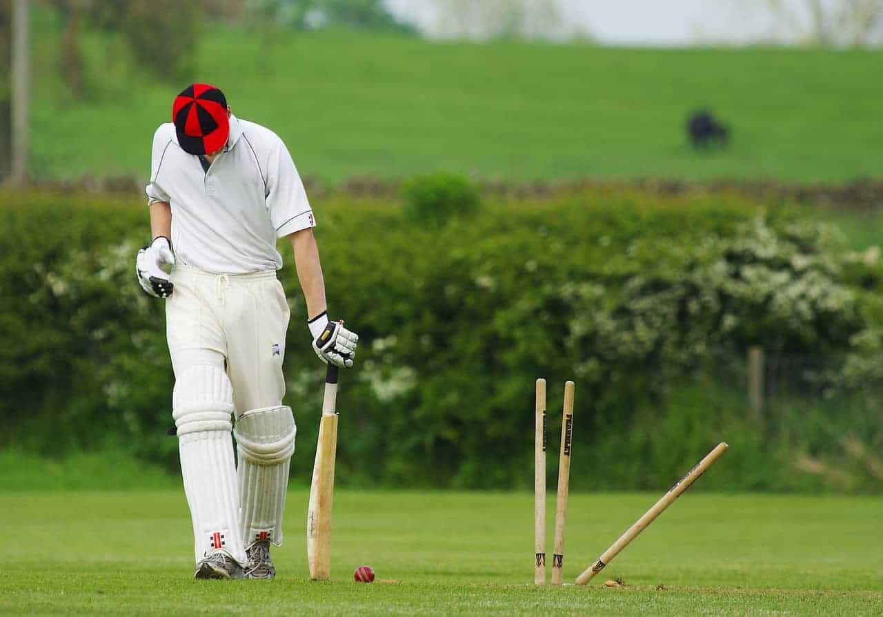 Cricket player on the field